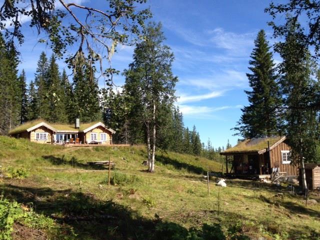 Dravlanseteren/Summer Mountain Farm