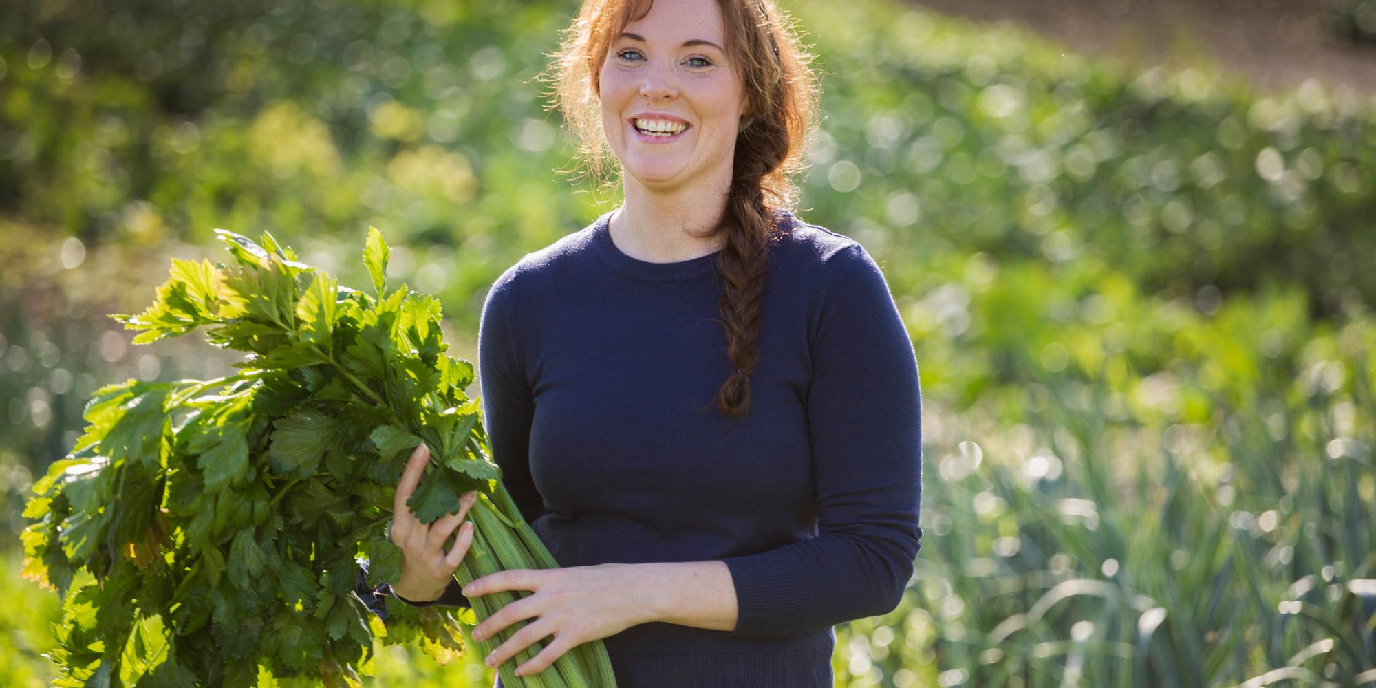 Ystgård Gartneri - innhøstning. Copyright: Lena Johansen