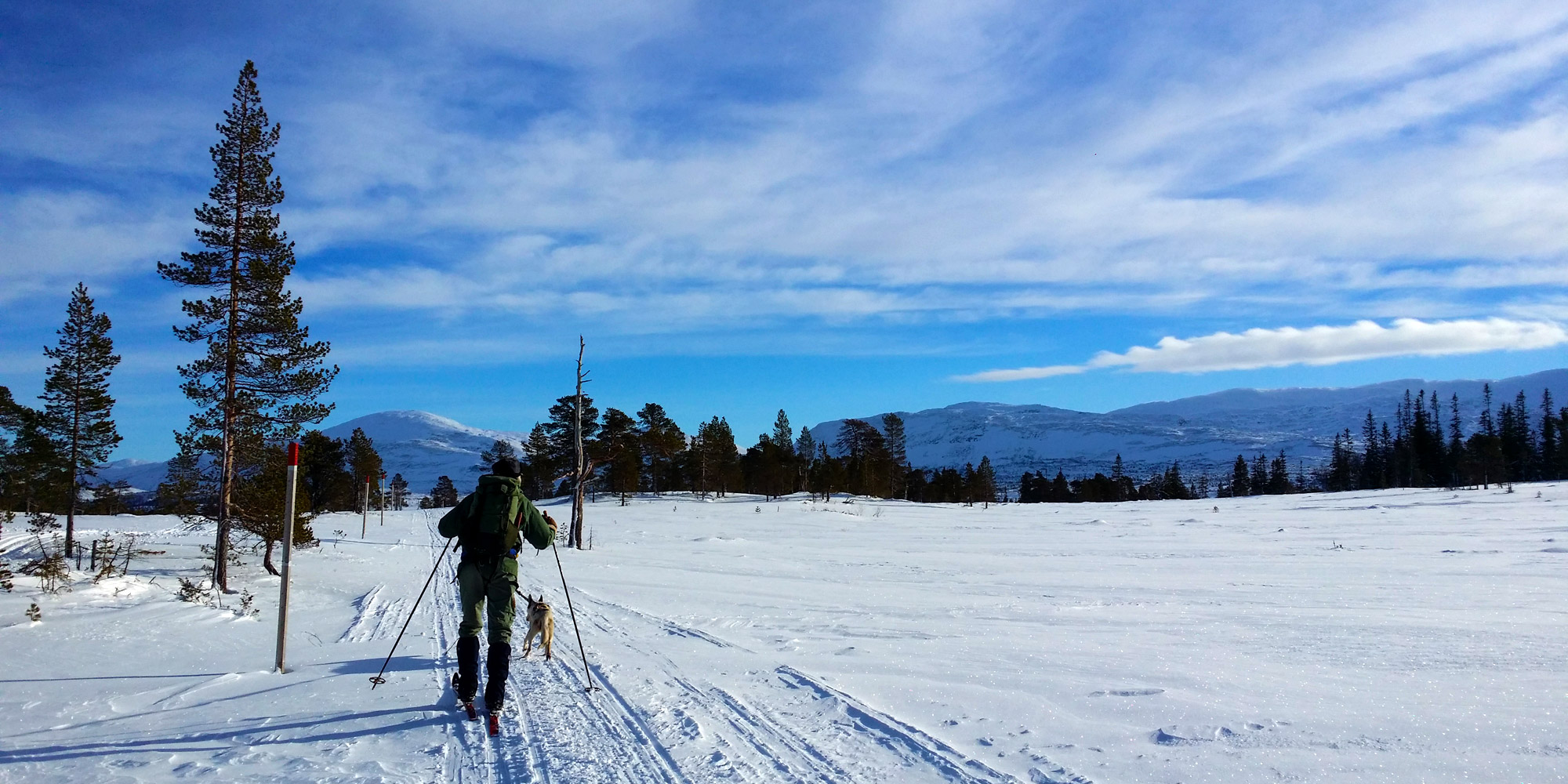 Skiing to the Geographical Midpoint in Steinkjer. Copyright: Visit Innherred