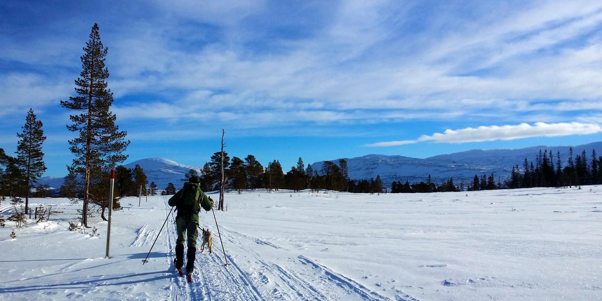 Skitur til Midtpunktet. Copyright: Visit Innherred