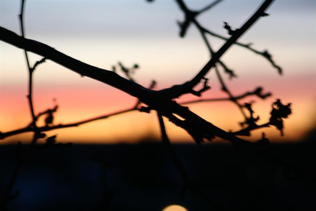 Solnedgång, Solnedgång