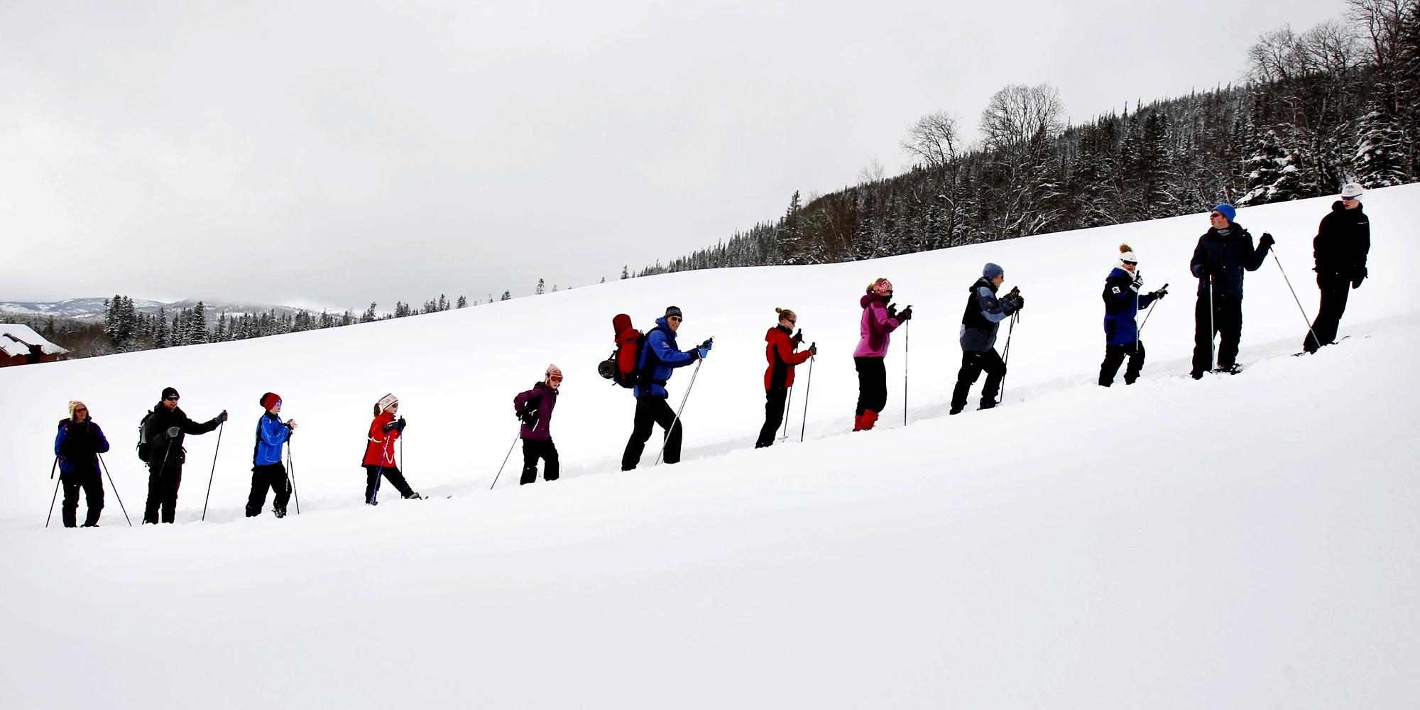 Mokk farm - snowshoeing in a long line. Copyright: Mokk gård