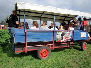 Safarivagn