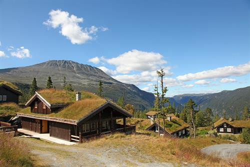All the cabins are situated in the Gaustatoppen area with beautiful view towards the mountain , © Stegarud Foto