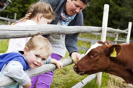 Barna får et nært møte med dyrene på våre setre. De kan også være med på fjøsstell.  , © Fotograf Jacobsen
