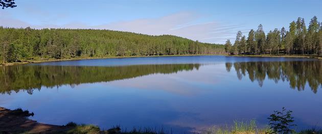 Laxtjärn the Lake, Terese Lindbäck
