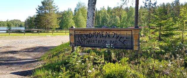 Harrträsket Skylt, Terese Lindbäck