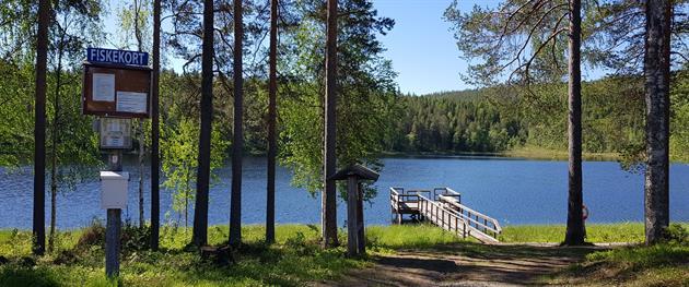 Lillbrännträsket Lake, Terese Lindbäck