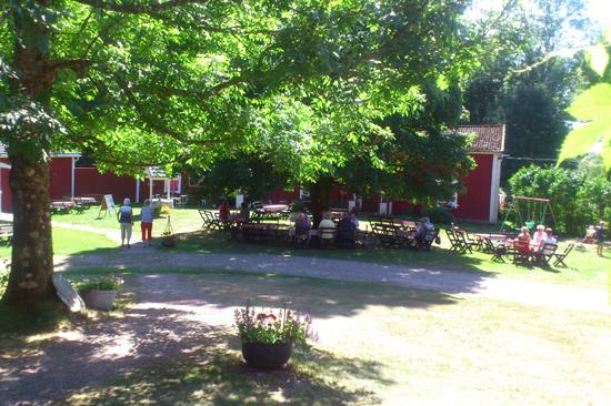 Glassbo Våffelstuga är en oas på den halländska skogsbygden mellan Hyltebruk och Halmstad