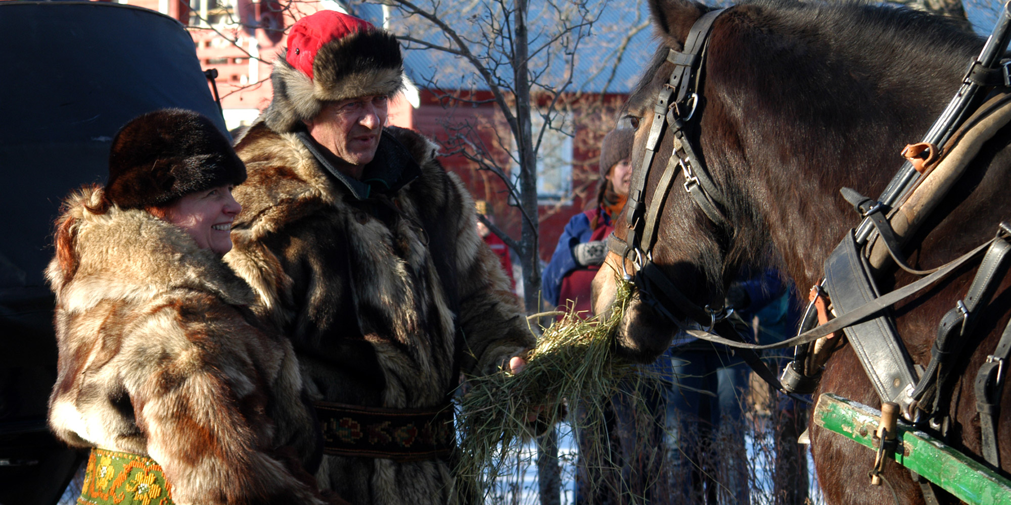 Marsimartnan i Levanger - mating av hest. Copyright: Visit Innherred