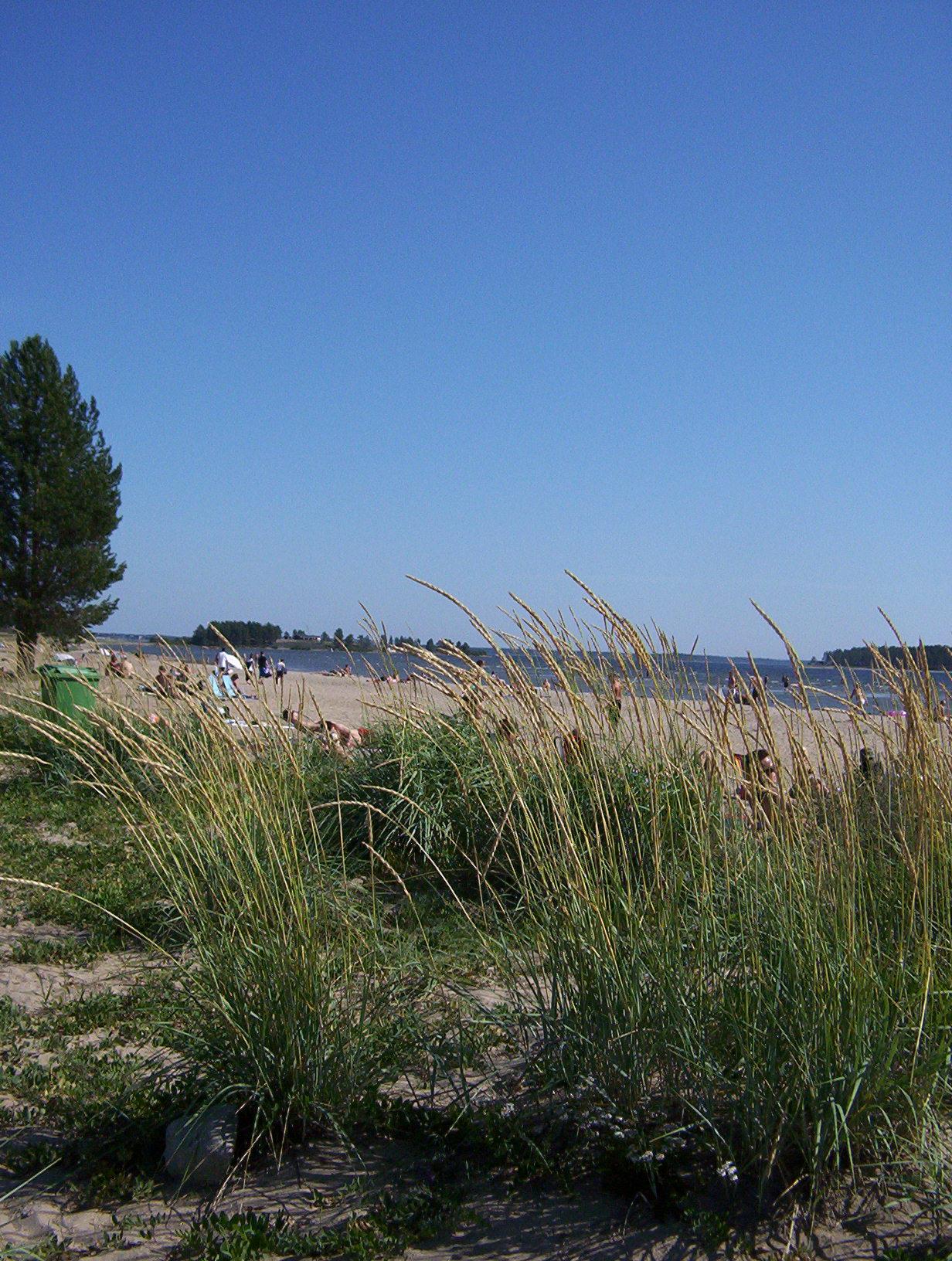 Pite havsbad beach