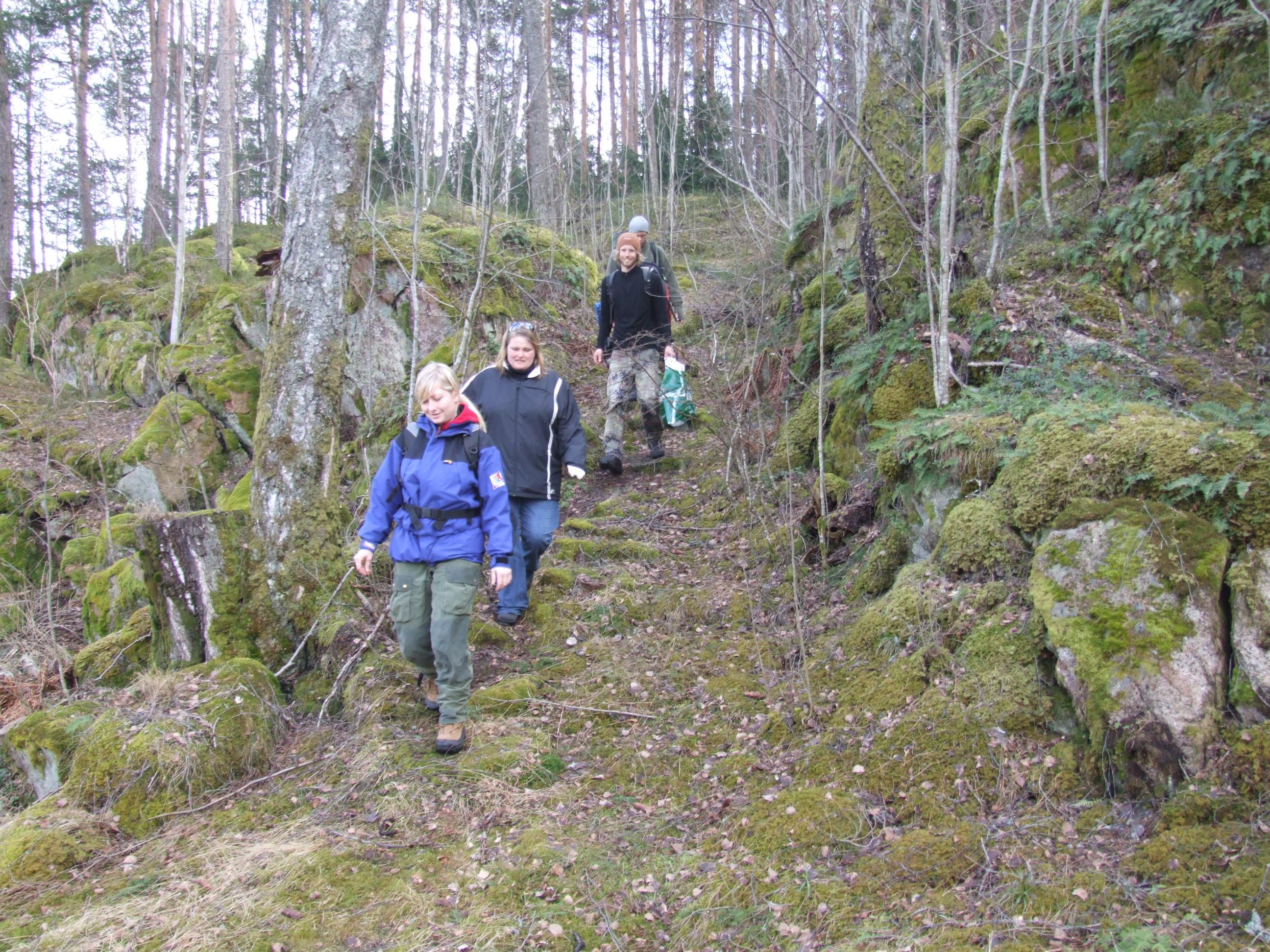 Turområder i Bergsbygda, Porsgrunn