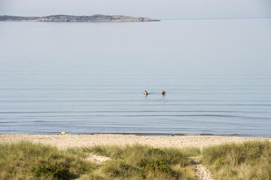 Åsa Camping & Havsbad ligger vid en av Västkustens mest attraktiva stränder med härlig sandstrand och häftiga klippor