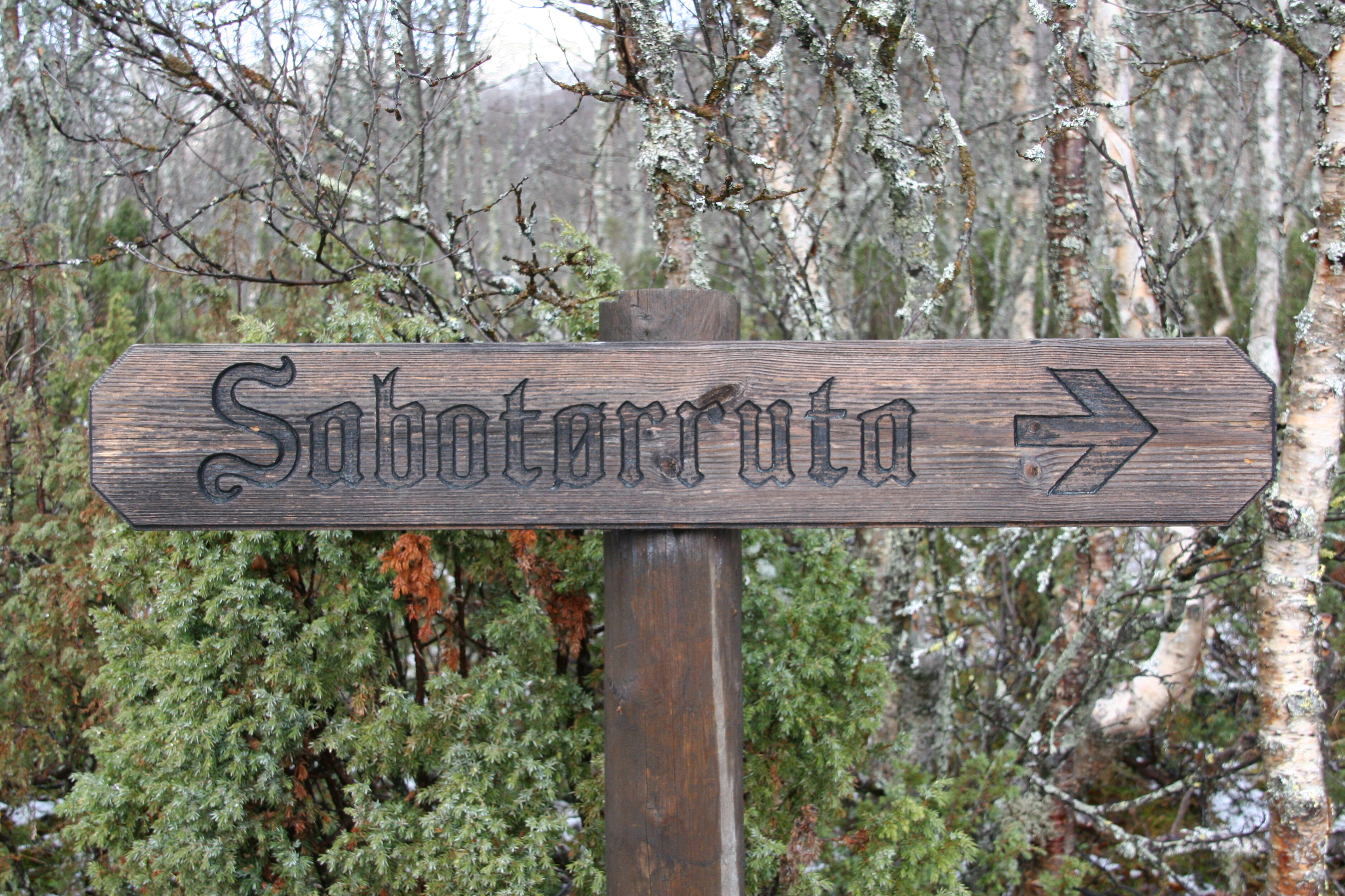 Rjukan Fjellstue er et naturlig utgangspunkt for en tur i Sabotørruta