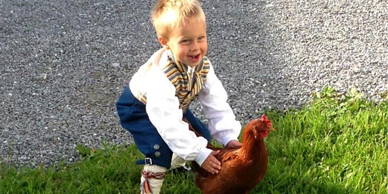 Husfrua gårdshotell - member of Golden Road, Inderøy - boy and hen . Copyright: Husfrua Gårdshotell