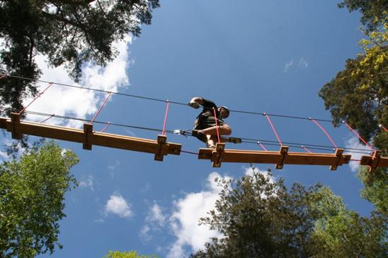 På Upzone Äventyrspark i Ullared upplever du äventyr uppe bland trädtopparna.