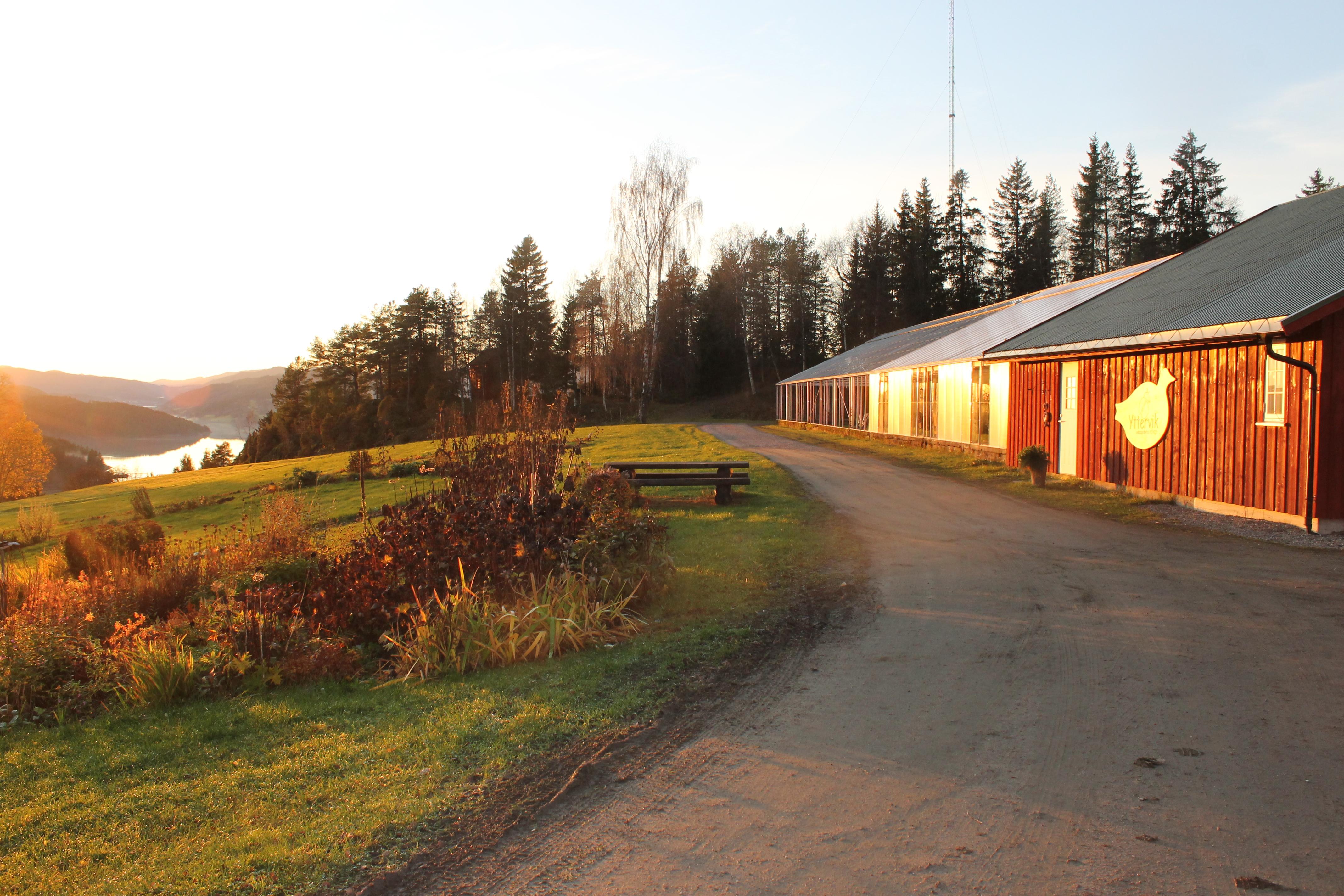 Høstkveld på Yttervik.