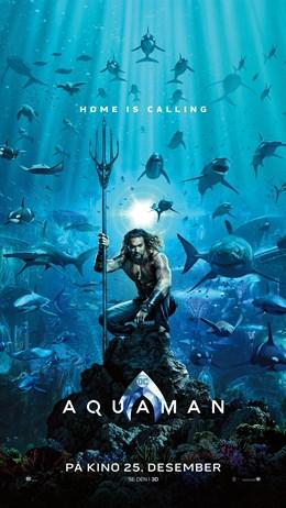Aquaman (2D)
