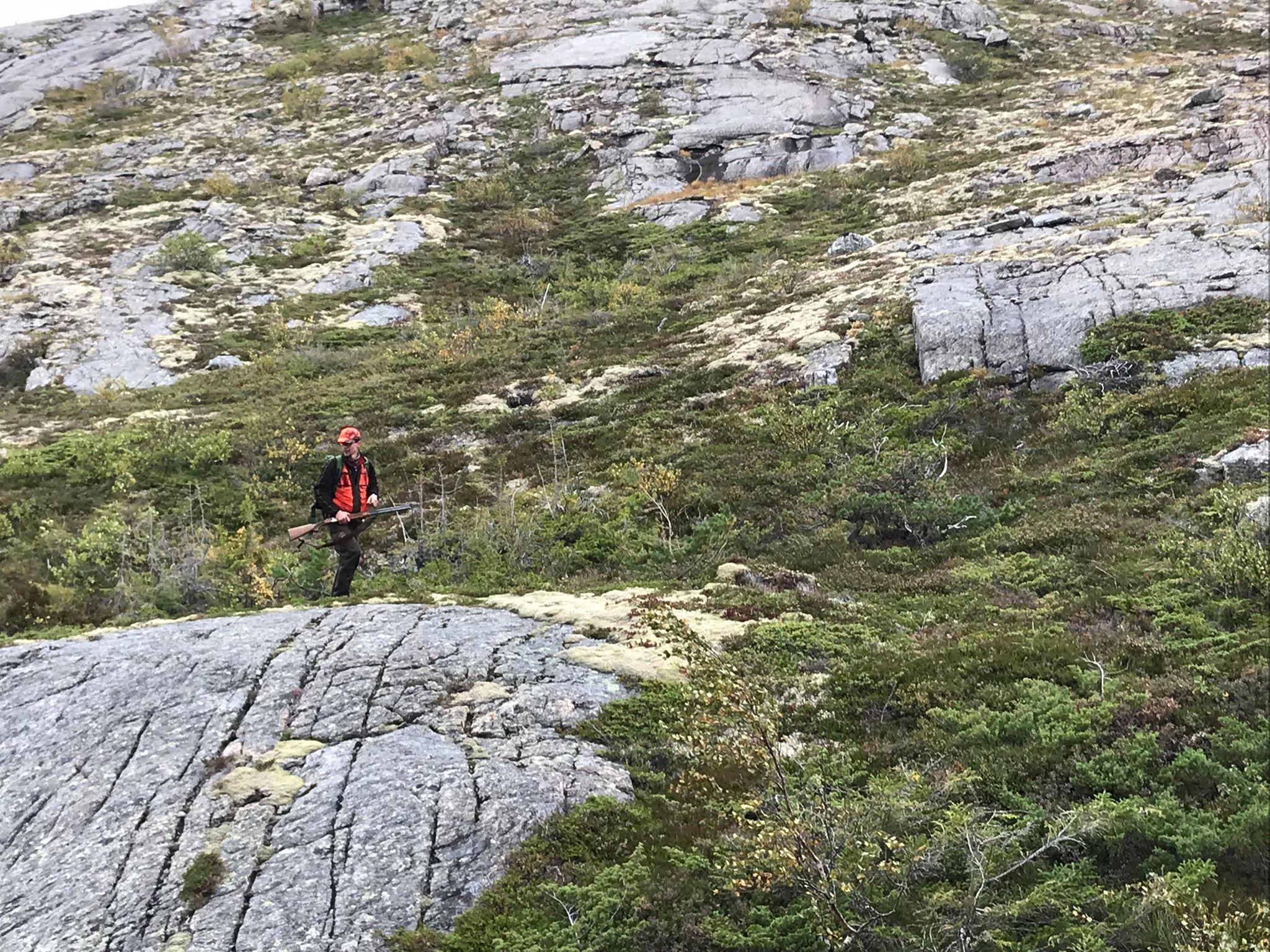 Småviltjakt i Fosnes og Nærøy kommune