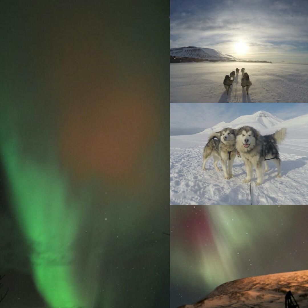 Northern Lights Compilation 1