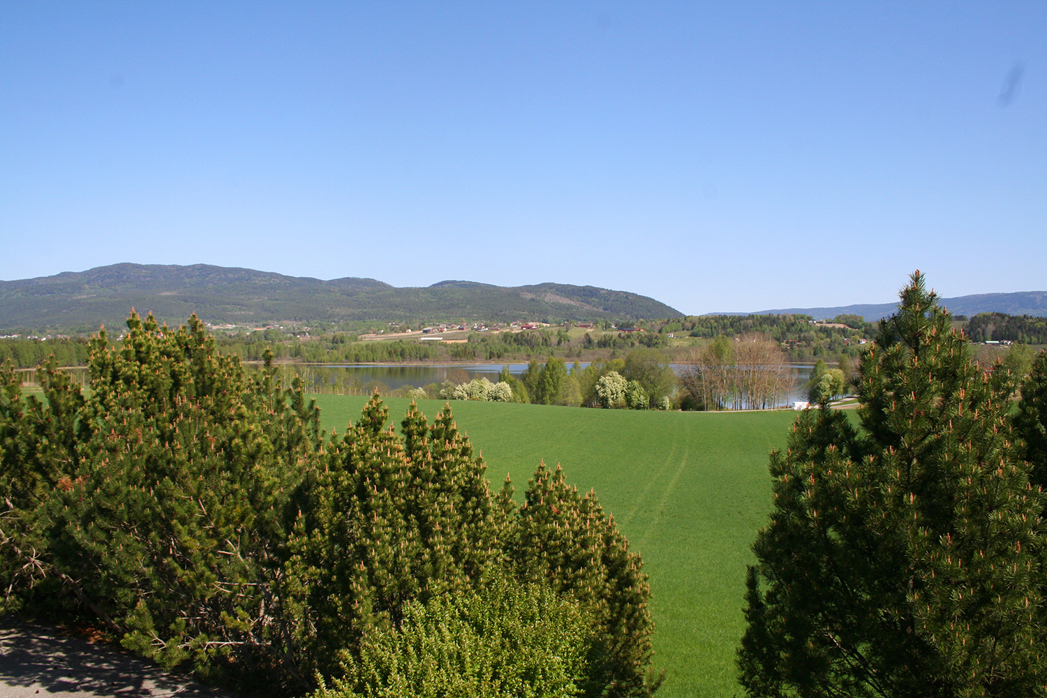 The view from the veranda at Aarnes Cafeteria, © Aarnes Kafeteria