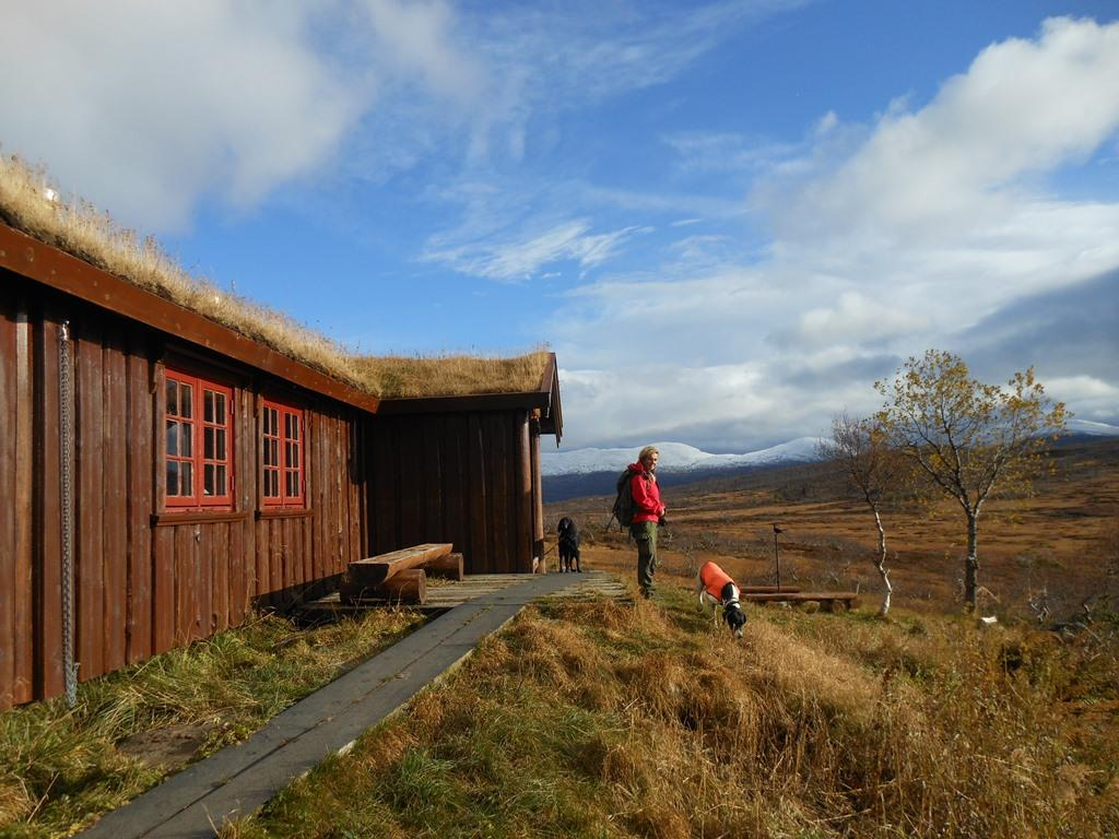 Lågvassbua (cabin)