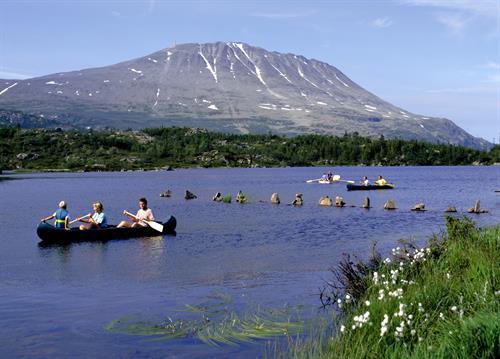 Mulighetene er mange dersom du har lyst til å leie kano for padleturer på våre idylliske vann. , © visitRjukan AS