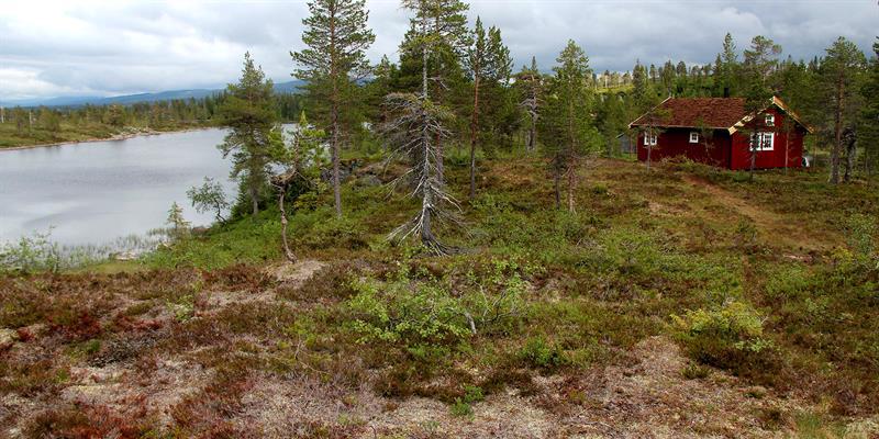 Andorsjøhytta (cabin)