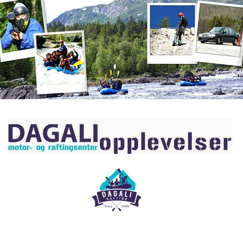 Dagali Opplevelser Logo