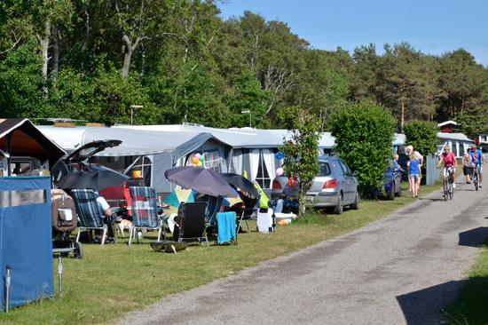 Marias Camping har 244 campingtomter nära Mellbystrands barnvänliga strand.