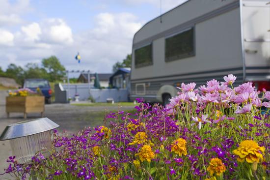2008 öppnade Stråvalla, som är en  familje- och seniorcamping