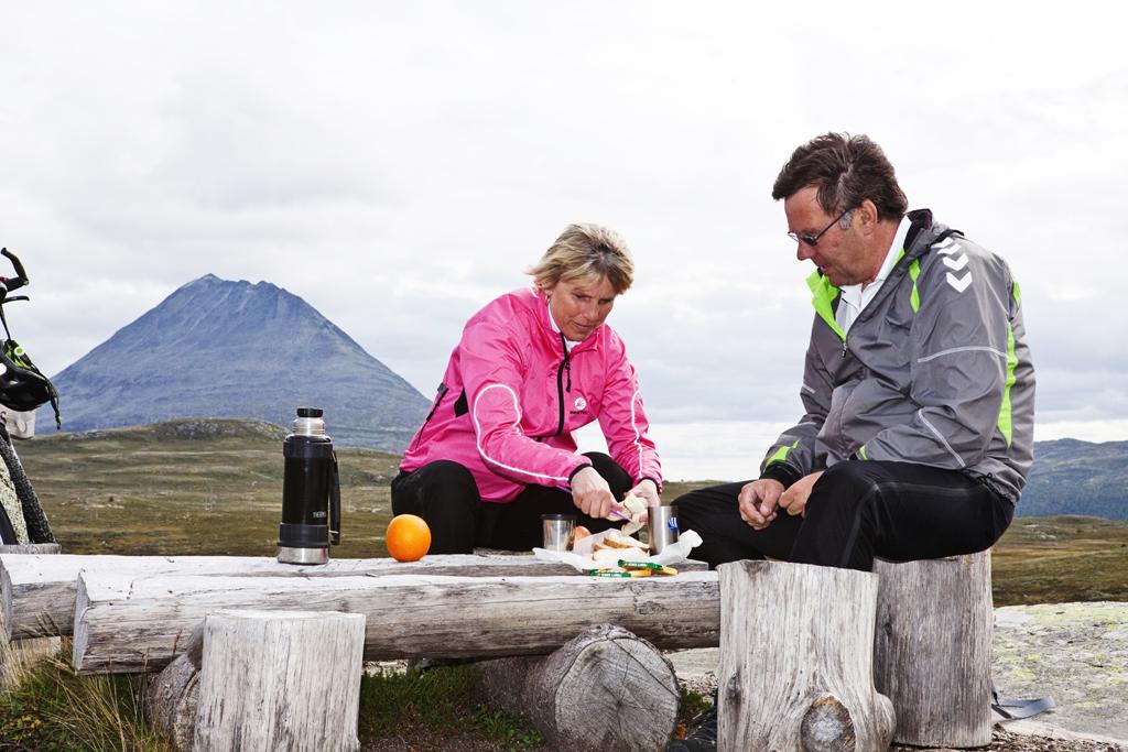 Langs sykkelturen på Hardangervidda er det flere fine rasteplasser.  , © Fotograf Jacobsen