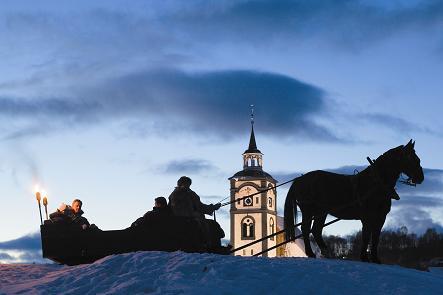 Stall Ardernes . Copyright: Morten Brun