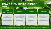 REKO-ringen Vest-Telemark