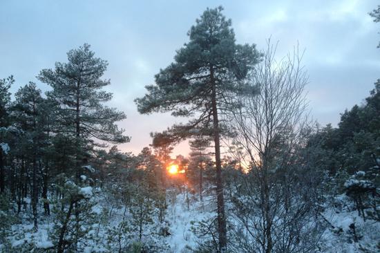 Hjortseryd är en konferens- och mötesanläggning i fantastisk natur på gränsen mellan Halland och Småland.
