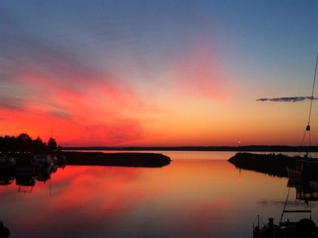 Midnattstur med Guide natura, Hansi Gelter