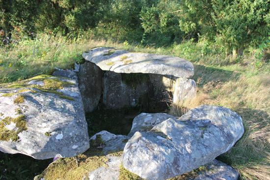 Gör ett spännade besök vid Tolarpsgraven utanför Halmstad