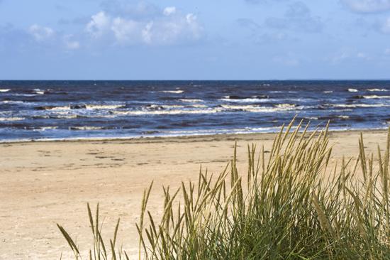 Strandpensionatet ligger precis vid havet och den långa sandstranden i Skummeslövsstrand