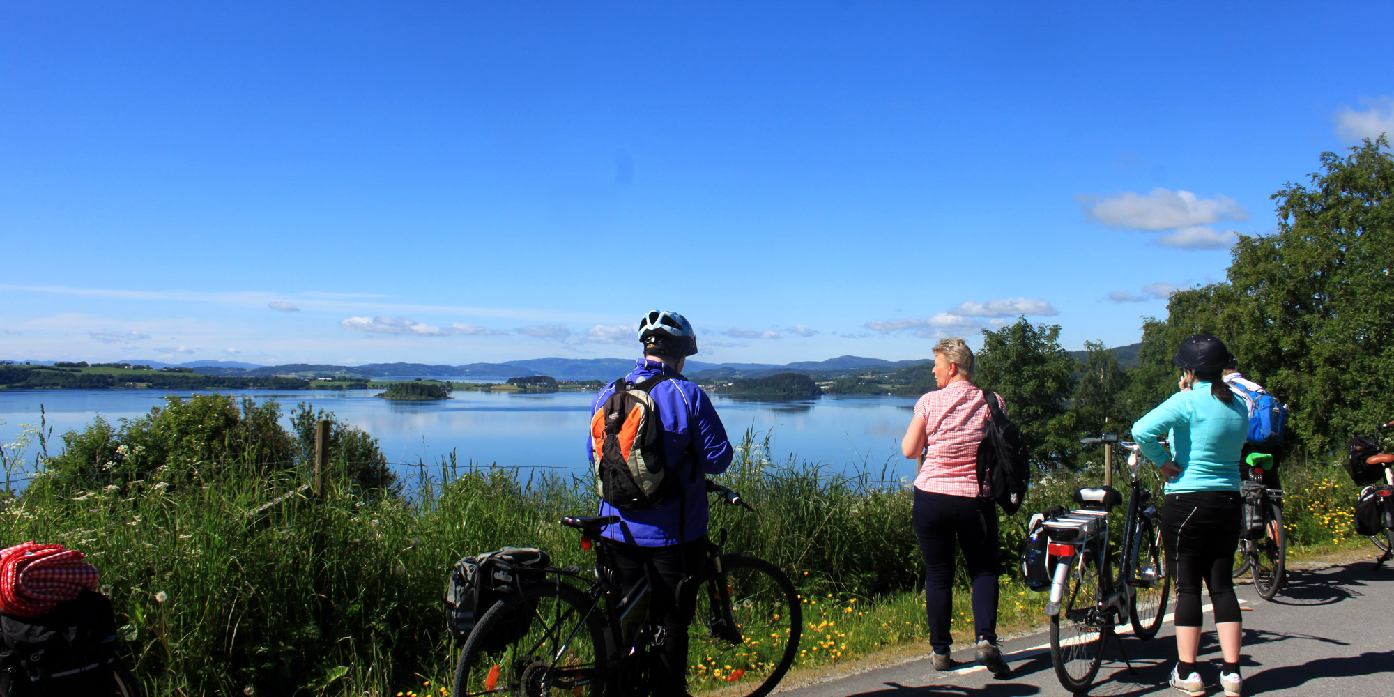 Around the Borgenfjorden by bike. Copyright: Visit Innherred