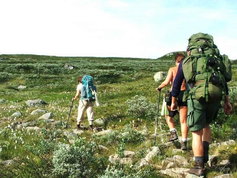 Hardangervidda sommer