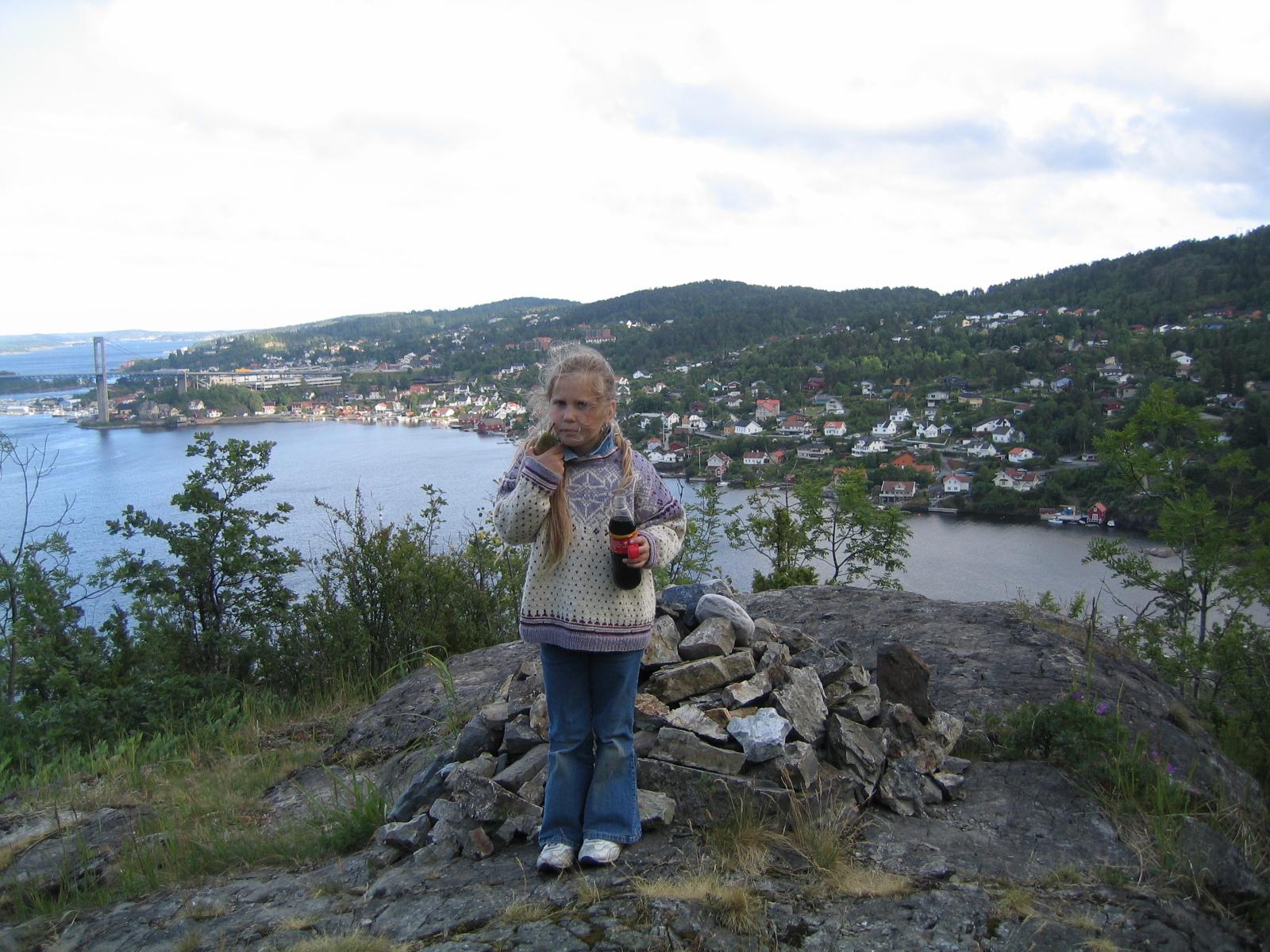 Utsikt over Brevik og Grenlansbrua, © Mette Lilleberg