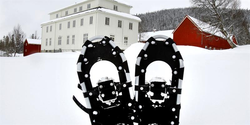 Snowshoeing at Mokk Farm