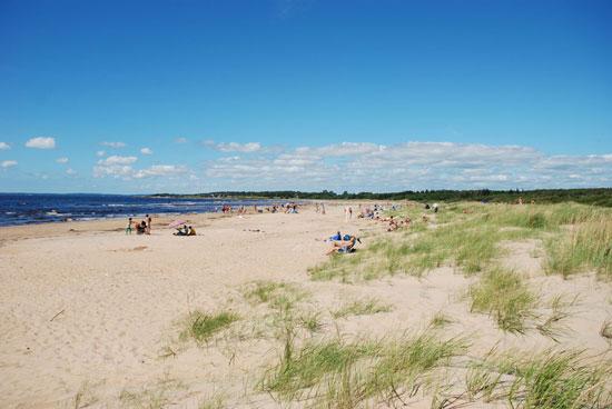 Ca 600 meter från Gullbrannagårdens camping breder en lång och barnvänlig sandstrand ut sig