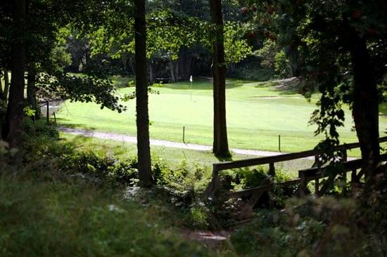 På Tylebäck finns det alla möjligheter att spela golf - golfbanan ligger granne med hotellet.