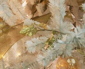 Vit julgranskvist, CA
