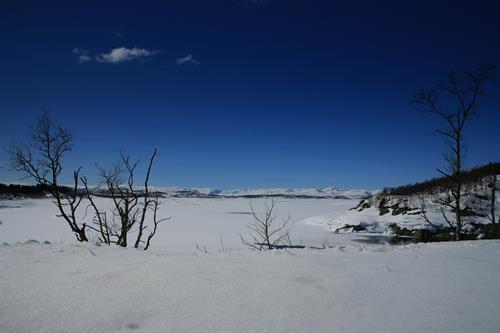 Mårbu ligger 1130 meter over havet., © Fleger