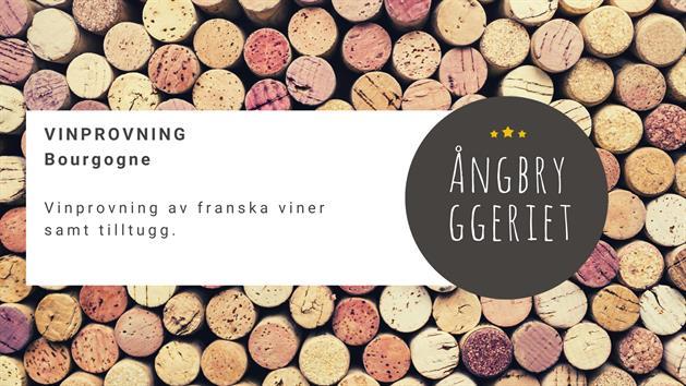 Vinprovning bourgogne