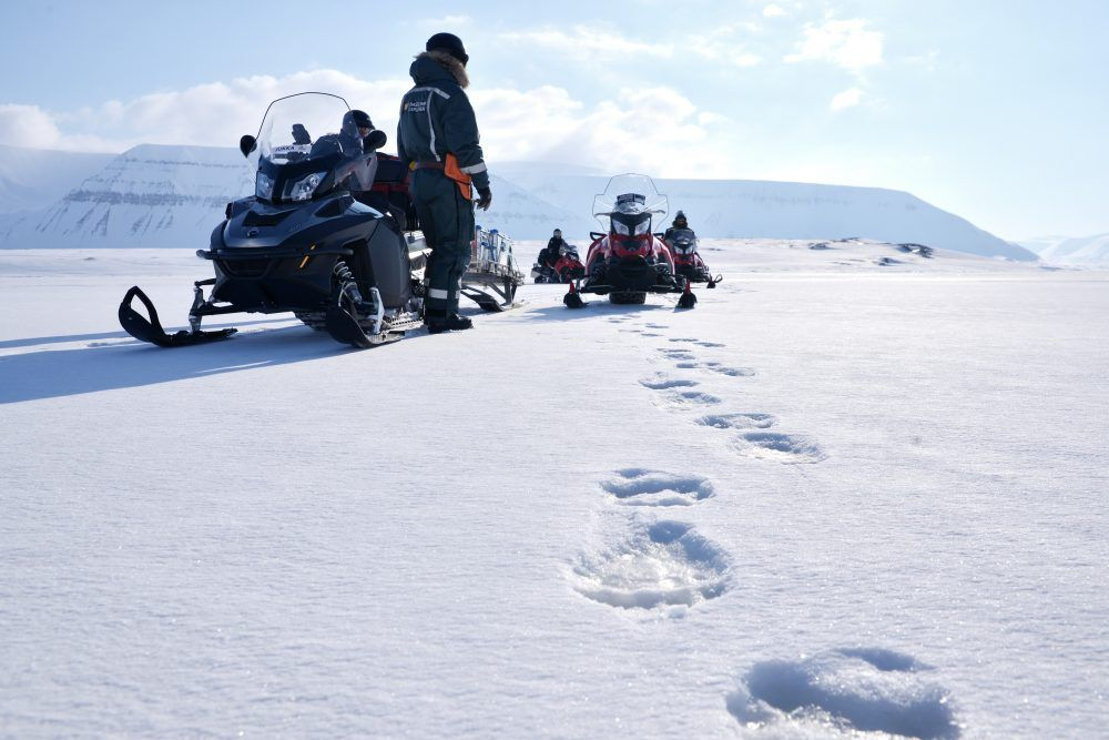 Snowmobile_polarbeartracks