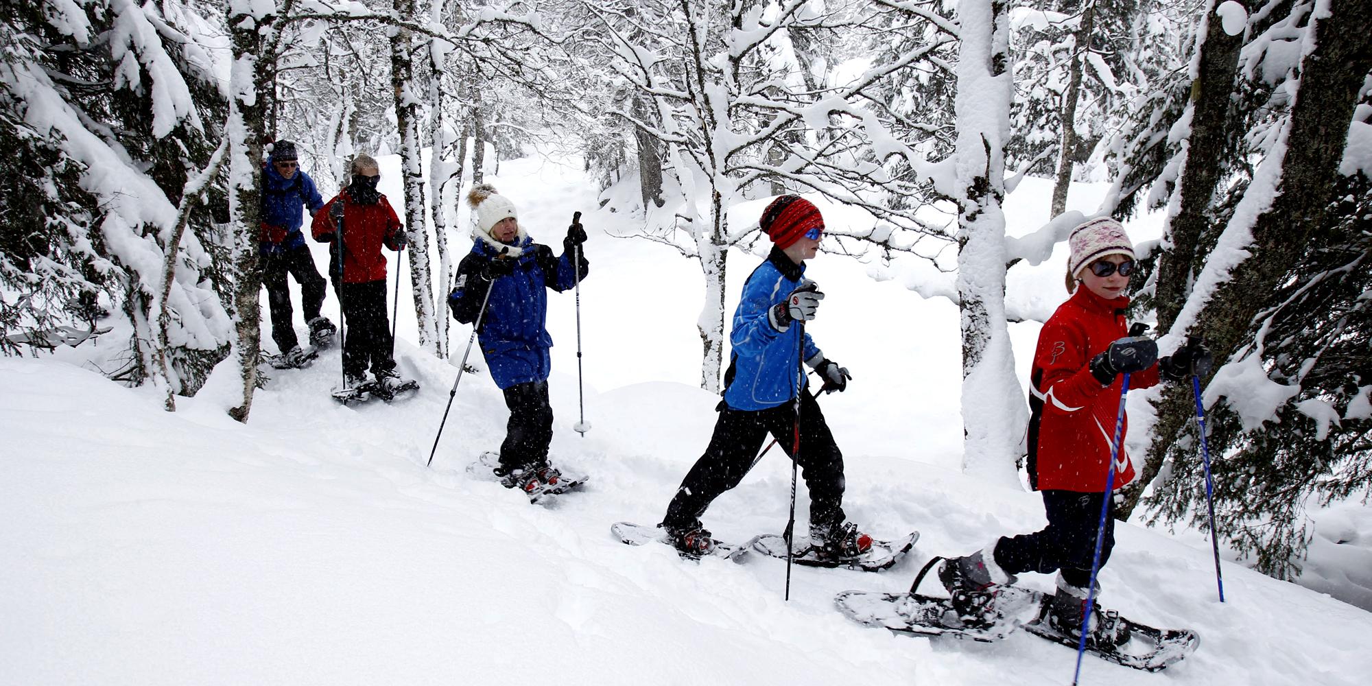 Mokk farm - children snowshoeing. Copyright: Mokk gård