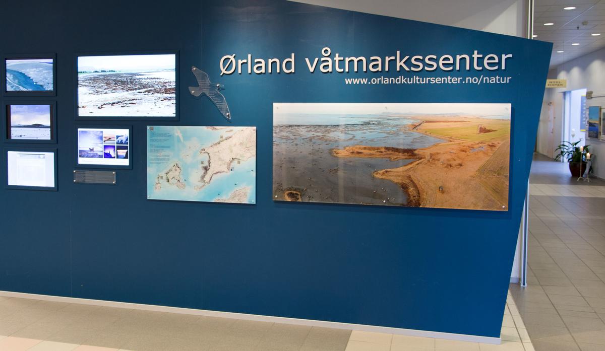 Ørland våtmarkssenter. Copyright: Ørland våtmarkssenter